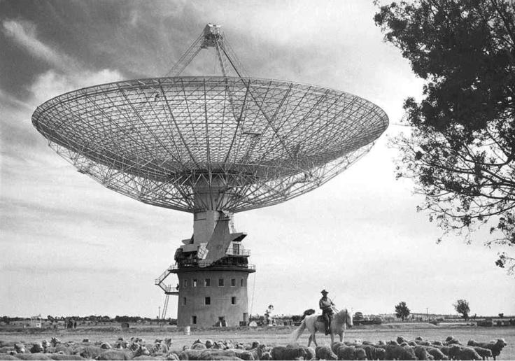 Austie (CSIROscope)